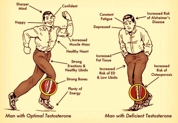 Los comentarios Testogen - Testogen testosterona elevadores de los Comentarios