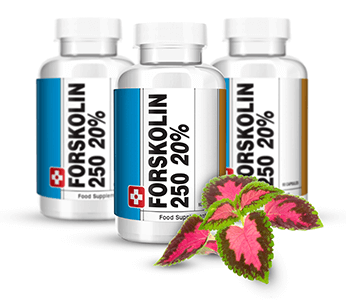 Forskolin 250 – Best Pure Forskolin עבור הרזיה