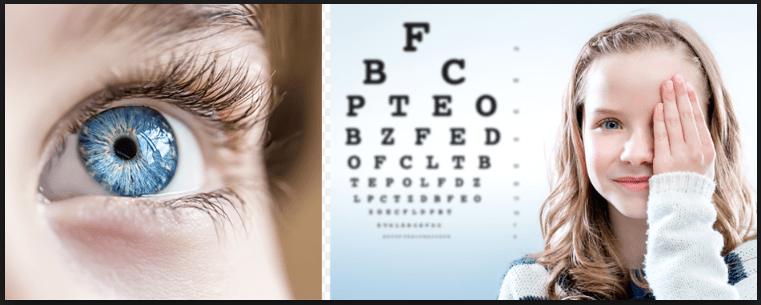 Zenith laboratorios Vision 20 Review – Ingredientes beneficios y efectos secundarios!